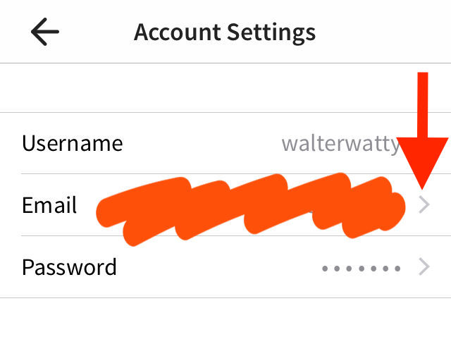 A screenshot of the account settings page, with an arrow pointing at the email option.